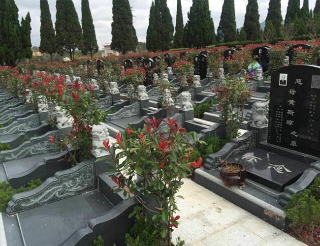 墓地陵园平面图